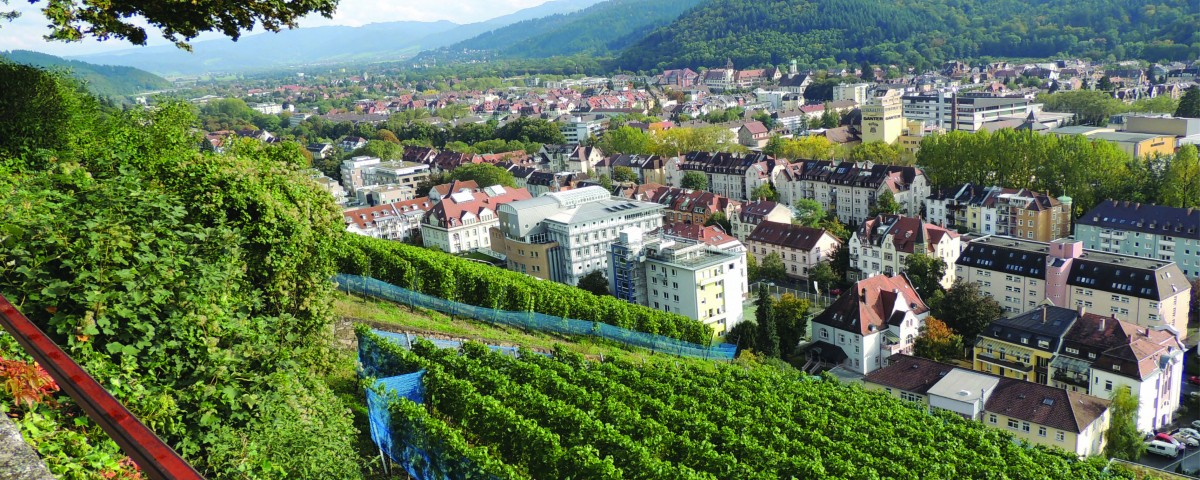 Photos-site-Internet-Reinach-Allemagne6